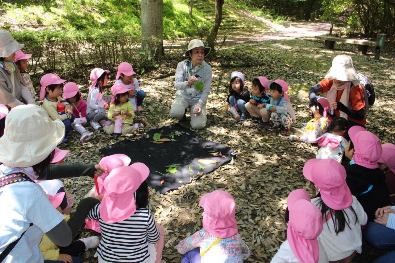 2019年6月13日 広島県緑化センター遠足(緑の学校)